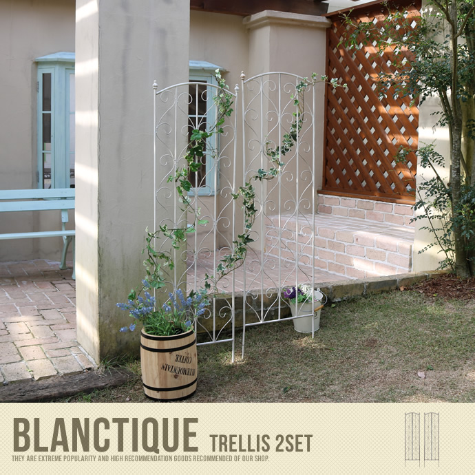 Blanctique Trellis 2Set
