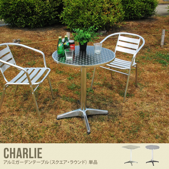 CHARLIE �A���~�K�[�f���e�[�u���i�ی^�^�p�^�j